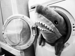 shark_in_the_washing_machine___by_samain