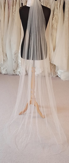 Floor length ivory sparkly veil