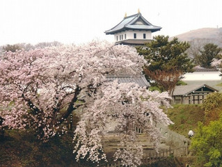 H田GW北海道旅行記2+百名城巡り20-2