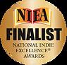 National Indie Awards Finalist 2017