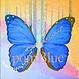 pomBlue LLC logo