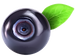 Blueberry_PNG_Clipart-212.png
