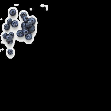 Blueberry-Blast_hero.png