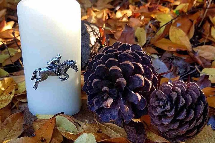 horse and rider  autumn.jpg