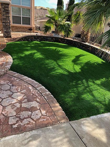 grass 555.JPG