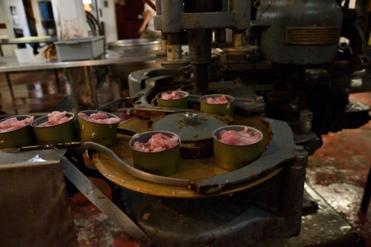 Canning Machine
