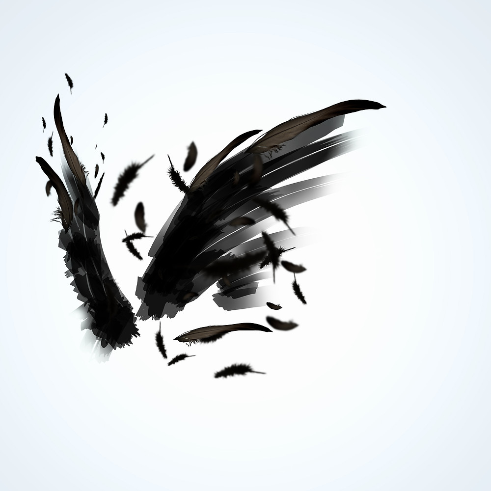 Abstract image of black wings against light background.jpg