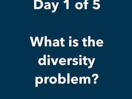 What's the Diversity Problem??