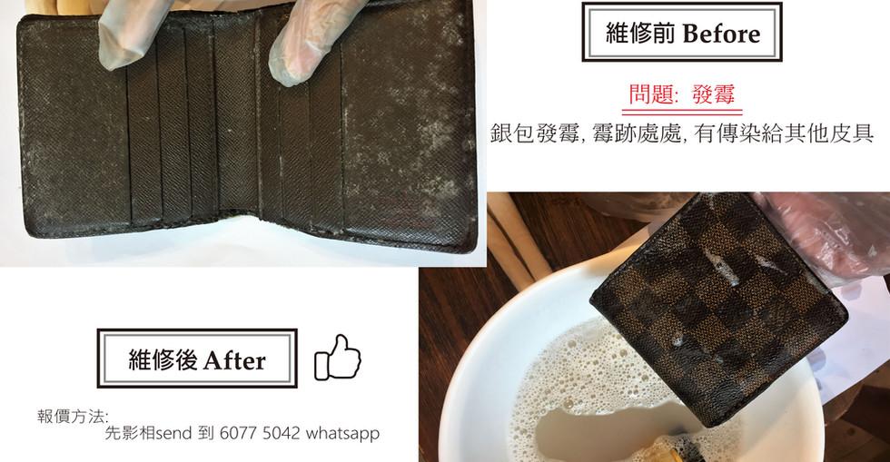lv wallet mold.jpg