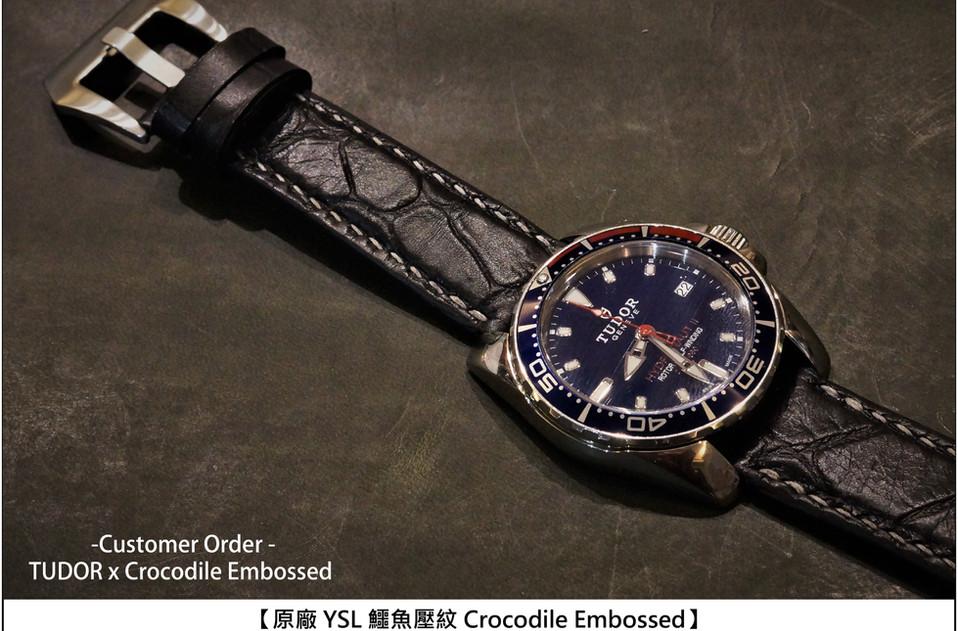 crocodile4.jpg