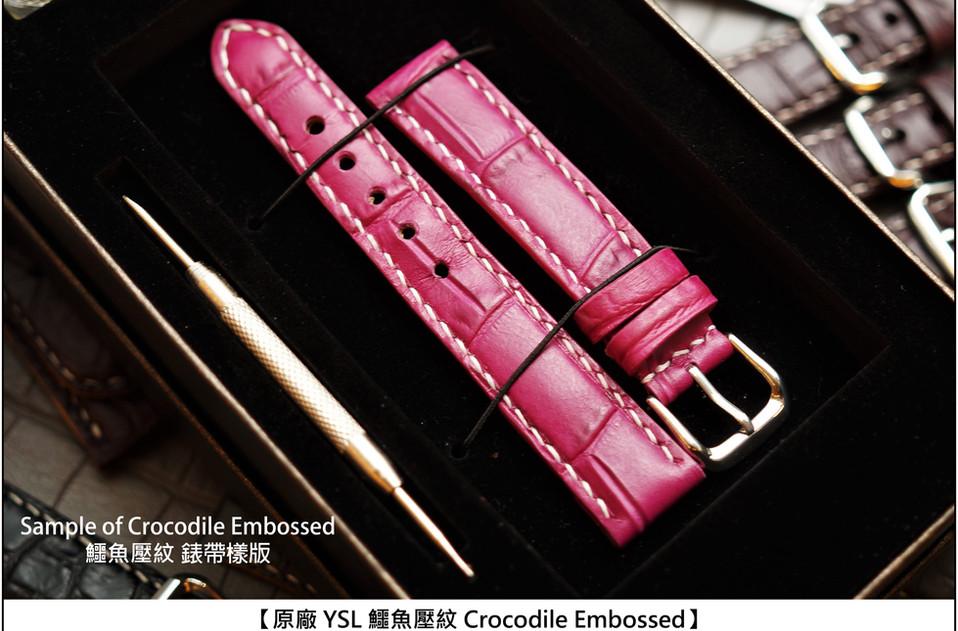 crocodile3.jpg