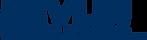 devlin-logo-ong.png