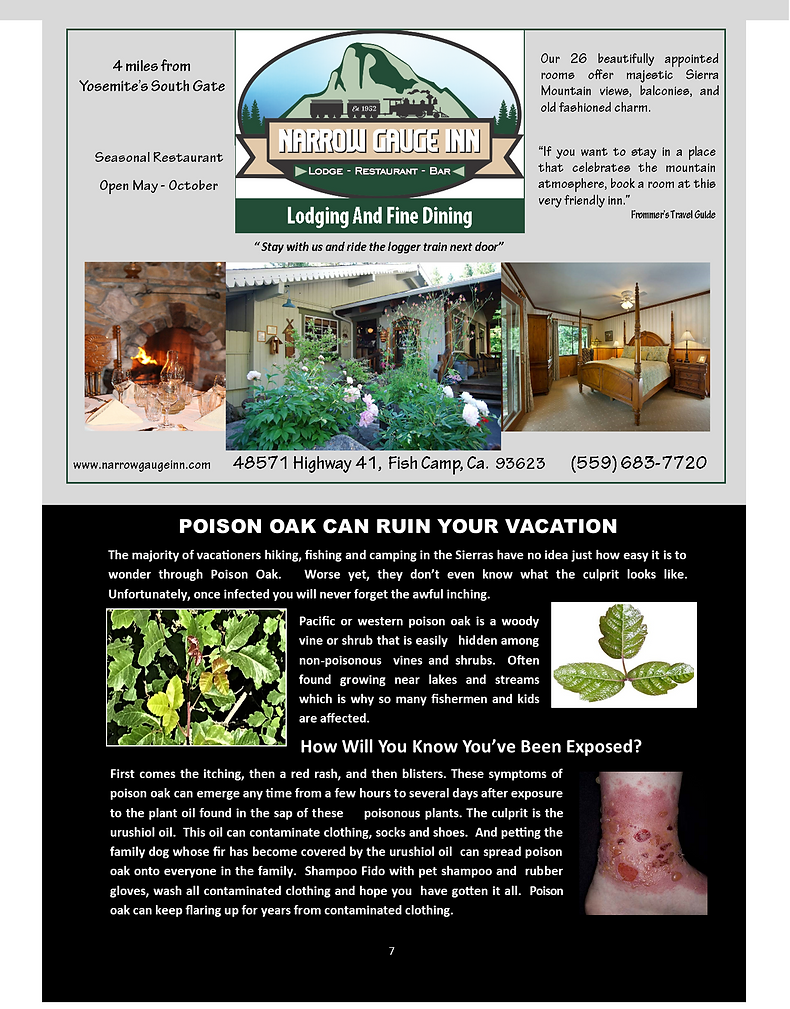 Page 7 2021 HSA MAG LAYOUT FOR PRINTER F