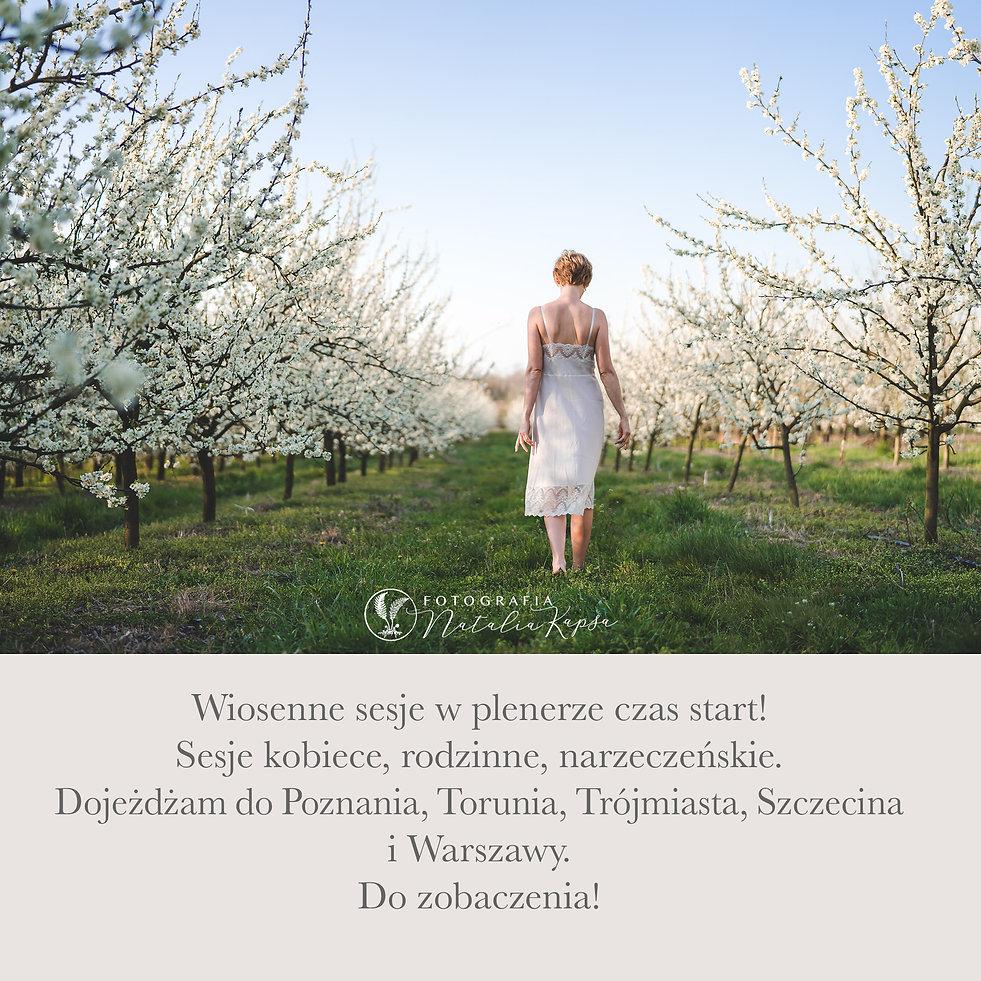 baner wiosna.jpg