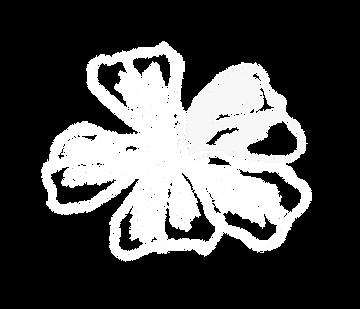 Ceratoblüte im Hintergrund