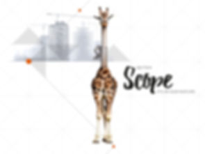scafom_animal_conceptiq_03.jpg