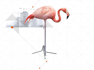 scafom_animal_conceptiq_slider_01.jpg