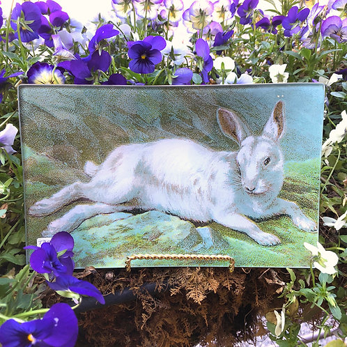 White Rabbit Trinket Tray