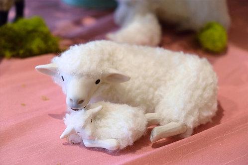 Galway Sheep Mother & Newborn
