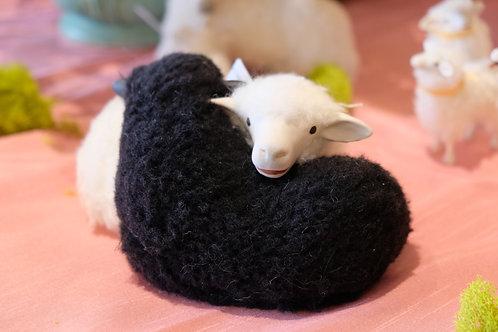 Intertwined Black & White Sheep