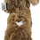 Thumbnail: Beaker