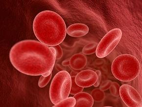 hematology-f00.jpg