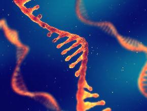 DNA-f00.jpg