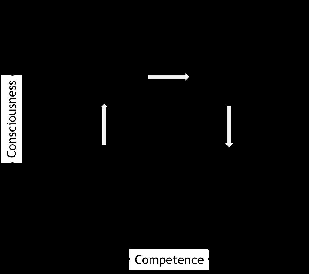 ארבעת שלבי היכולת של מרטין ברודוול