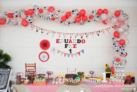 Aniversário do Dudu | 01 Aninho | Aline & Eduardo