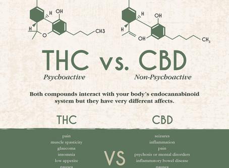 THC vs. CBD: Are they the same?