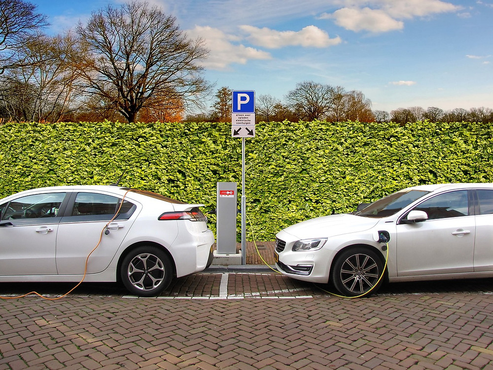 Multiple electric cars being charged by electricity