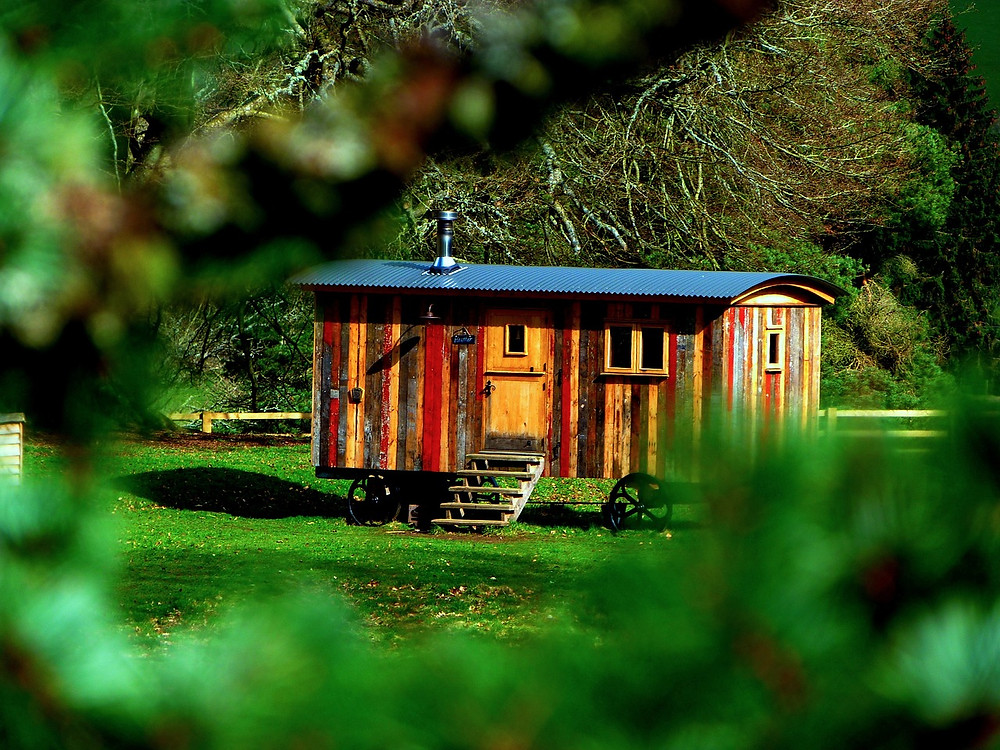 Tiny wood house in field - solar panels for tiny houses