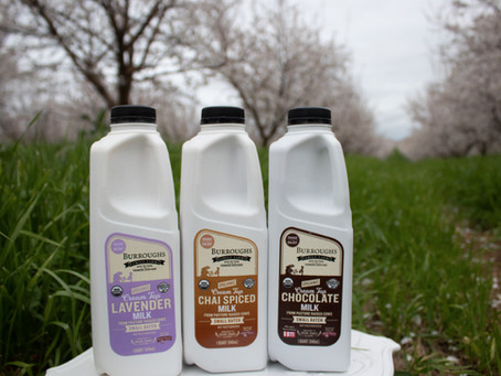 New Flavored Milk from Burroughs Family Farms