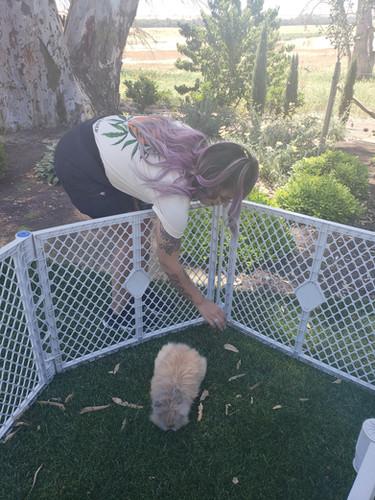 Jenny Meeting Bunnies at Burroughs Family Farms