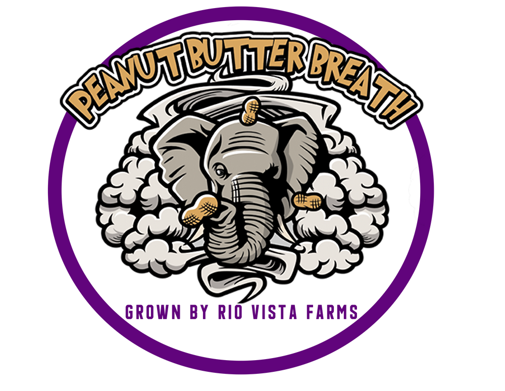 Peanut Butter Breath Logo