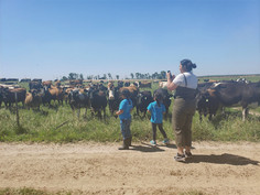 Photos at Burroughs Family Farms