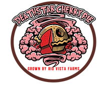Death Star Cherry Pie
