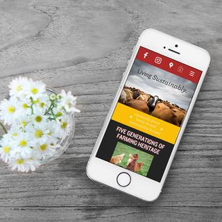 Website for Burroughs Family Farms