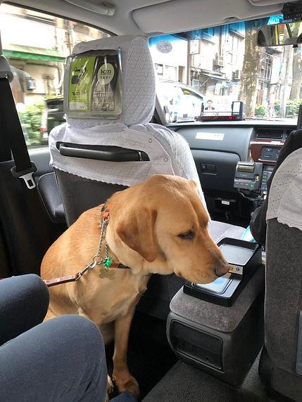 Nixon in a taxi
