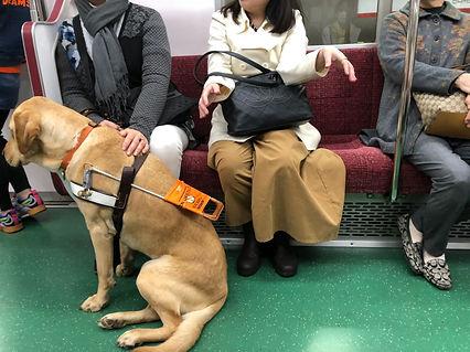 Nixon on train across legs