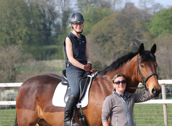 Dressage, Show Jumping, X-Country: Lessons to Remember