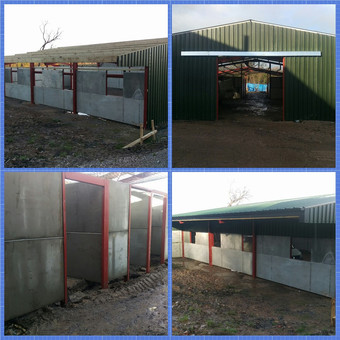 Equine shed