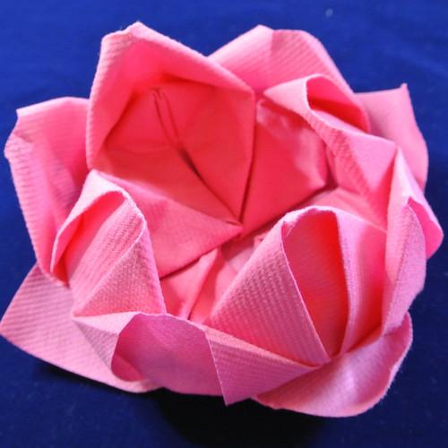 trendy serviette plie en fleurs de lotus pieces with pliage serviette fleur de palmier. Black Bedroom Furniture Sets. Home Design Ideas
