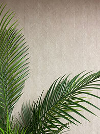 Zen wallpaper and palm.jpg