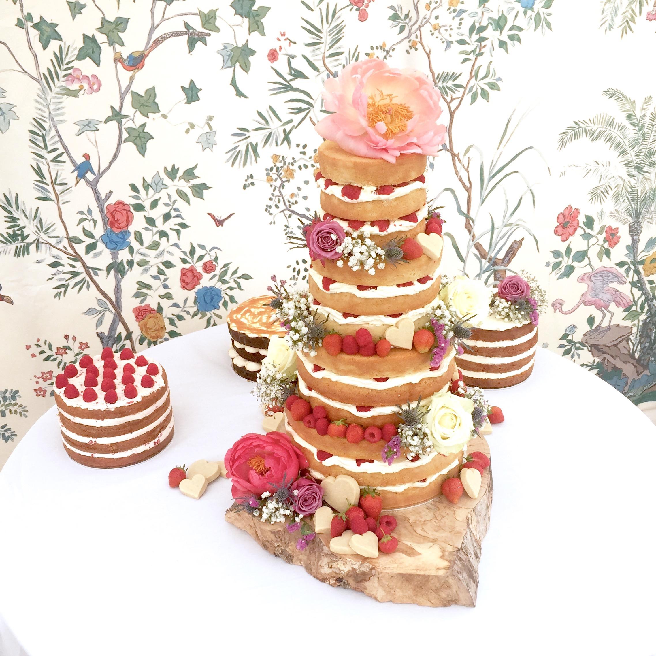 naked cake line up