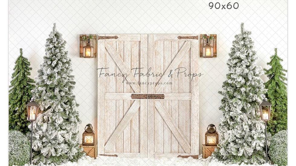 Rustic White Winter Indoor Session