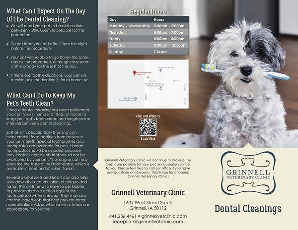 Dental Brochure 3-2020 thru 2-2021.jpg