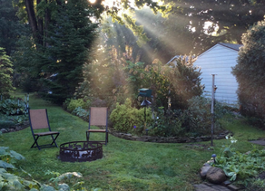 Tips to Beautify Your Backyard in 2020