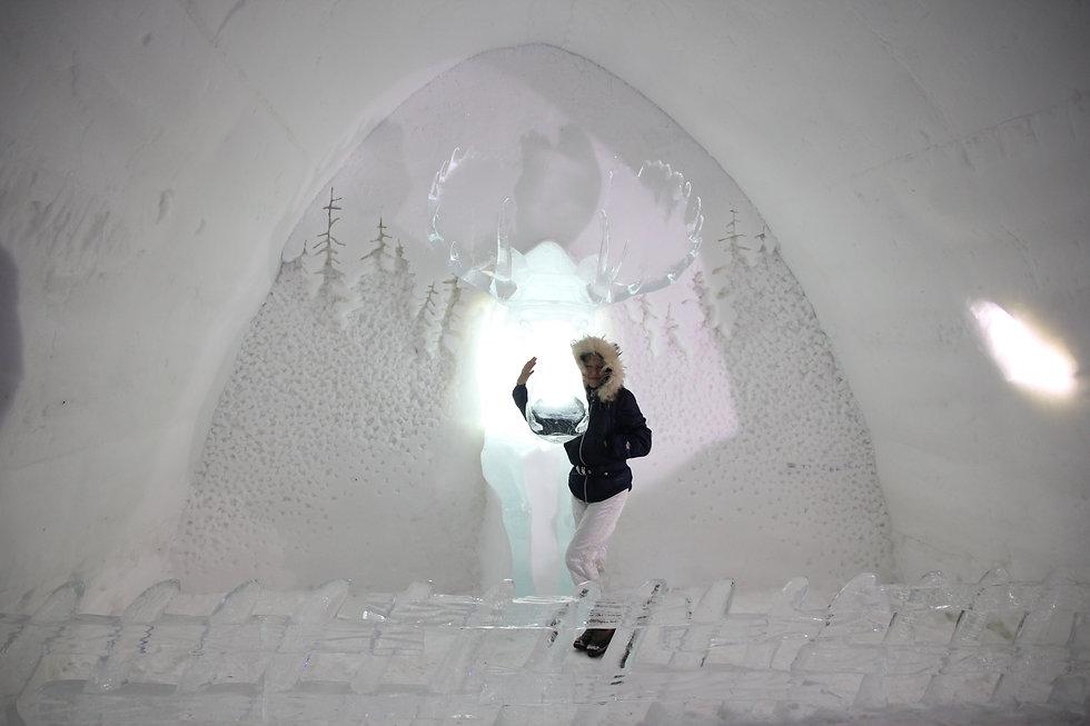 Mein Lappland mit Birgit Tejera