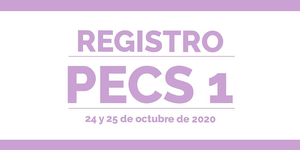 REGISTRO - PECS 1 - Grupo 2